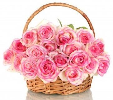 Квіти, картинки