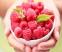 Кетон малини (Raspberry ketone) - 1